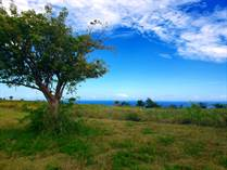 Lots and Land for Sale in Bo. Jobos, Isabela, Puerto Rico $225,000