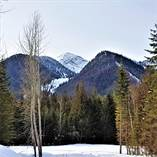 Lots and Land for Sale in Fernie Alpine Resort Ski Hill, Fernie, British Columbia $309,000