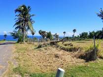 Lots and Land for Sale in Jobos Cliff, Isabela, Puerto Rico $160,000