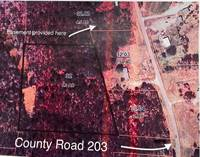 Lots and Land for Sale in Walnut, Mississippi $8,000