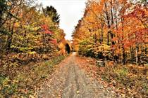 Lots and Land for Sale in Chertsey, Quebec $29,000