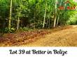 Lots and Land for Sale in Benque, Cayo $17,000