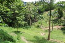 Lots and Land for Sale in Puntas, Rincon, Puerto Rico $145,000
