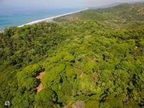 Lots and Land for Sale in Dominical, Puntarenas $1,700,000