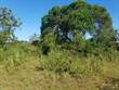 Lots and Land for Sale in Diani Beach  KES12,000,000