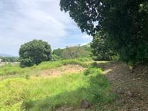 Lots and Land for Sale in Rio Grande , Atenas, Alajuela $50,000