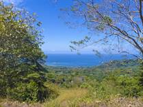 Farms and Acreages for Sale in Escaleras, Puntarenas $689,000