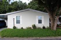 Homes for Sale in Strawberry Ridge, Valrico, Florida $36,500
