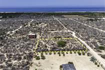 Lots and Land for Sale in Todos Santos, Baja California Sur $52,000