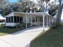 Homes for Sale in Forest Lake Estates, Zephyrhills, Florida $22,500