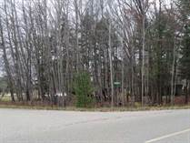Lots and Land for Sale in Sugar Springs, Gladwin, Michigan $15,900
