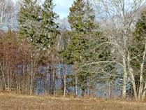 Lots and Land for Sale in Lower Montague, Montague, Prince Edward Island $32,800