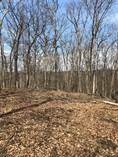 Lots and Land for Sale in Great Cacapon, West Virginia $60,000