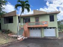 Homes for Sale in Guaraguao, Puerto Rico $119,000