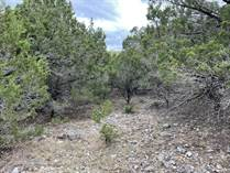 Lots and Land for Sale in Clear Water Estates, Canyon Lake, Texas $32,000