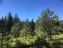 Lots and Land for Sale in New Meadows, Idaho $51,900