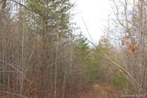 Lots and Land for Sale in Marion, North Carolina $212,000