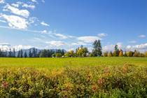 Farms and Acreages for Sale in N.E. Salmon Arm, Salmon Arm, British Columbia $1,999,000