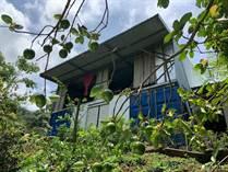 Homes for Sale in Barrio San José, Atenas, Alajuela $79,000