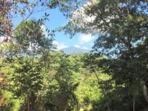 Lots and Land for Sale in Ojochal, Puntarenas $55,000