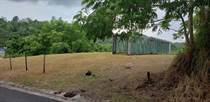 Lots and Land for Sale in Bo. Cruces, Aguada, Puerto Rico $74,500