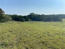 Lots and Land for Sale in Mystic Shores, Spring Branch, Texas $129,900