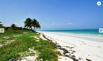 Lots and Land for Sale in Tulum, Quintana Roo $1,250,000