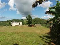 Homes for Sale in Bo Hoyamala, Hoya Mala, Puerto Rico $59,000