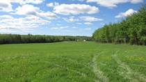 Lots and Land for Sale in Rangeton, Alberta $199,900