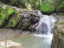Farms and Acreages for Sale in Tinamastes, Puntarenas $160,000