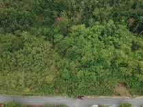 Lots and Land for Sale in Puntas, Rincon, Puerto Rico $89,000