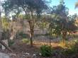 Homes for Sale in Los Ayala, Nayarit $65,000