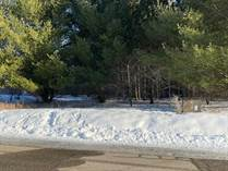 Lots and Land for Sale in Gladwin, Michigan $6,900