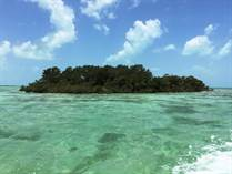 Homes for Sale in West Coast, Ambergris Caye, Belize $799,000