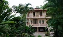 Homes for Sale in Tinamastes, Puntarenas $695,000