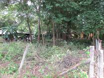Lots and Land for Sale in Playa Potrero, Guanacaste $37,500
