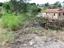 Homes for Sale in San Ignacio, Cayo $25,000