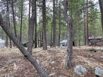 Recreational Land for Sale in Beaverdell/Carmi, Kelowna, British Columbia $239,900
