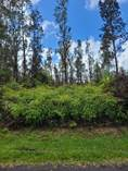 Lots and Land for Sale in Pahoa, Hawaii $12,000