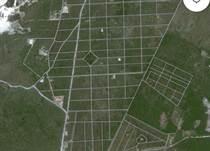 Lots and Land for Sale in Bavaro, La Altagracia $105,000