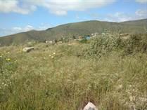 Lots and Land for Sale in Ensenada, Baja California $380,000