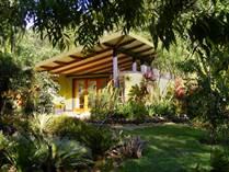 Commercial Real Estate for Sale in San Isidro De El General, Puntarenas $2,600,000