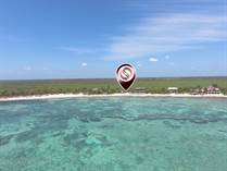 Lots and Land for Sale in Playa del Carmen, Quintana Roo $2,500,000