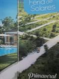 Lots and Land for Sale in Bavaro, La Altagracia $14,820