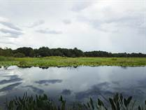 Lots and Land Sold in Riverlakes Manor, Hernando, Florida $25,900