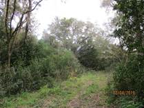 Lots and Land for Sale in Spring Hill, Florida $50,000