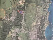 Lots and Land for Sale in Higuillar, Dorado, Puerto Rico $450,000