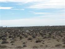 Lots and Land for Sale in Puerto Penasco/Rocky Point, Sonora $12,000