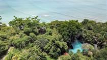 Homes for Sale in Puerto Jimenez, Puntarenas $449,000