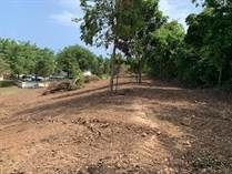 Lots and Land for Sale in Bo. Puente, Camuy, Puerto Rico $75,000